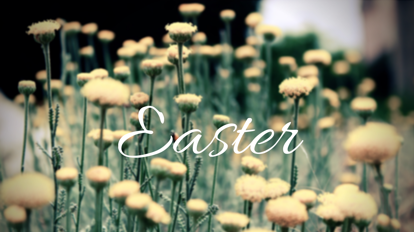 Easter At Redemption!