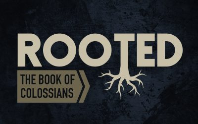 Rooted: A Study In The Book Of Colossians